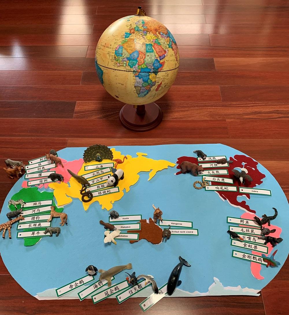 montessori felt map and globe