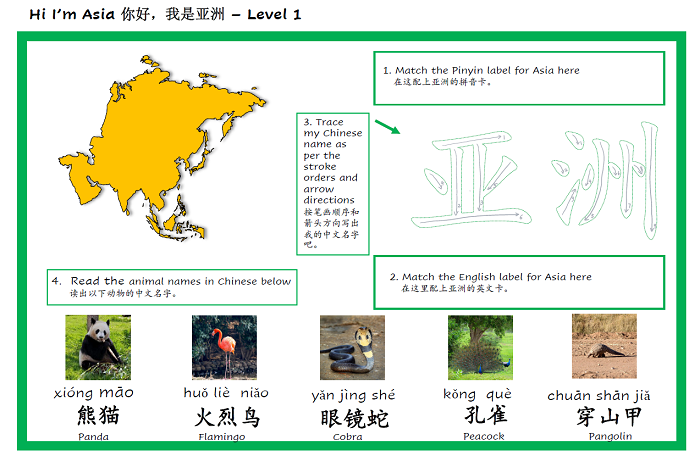 continent and animal activity sheet in chinese