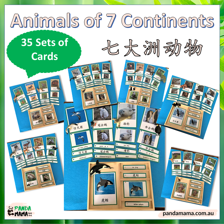 montessori continent animal cards in chinese and english
